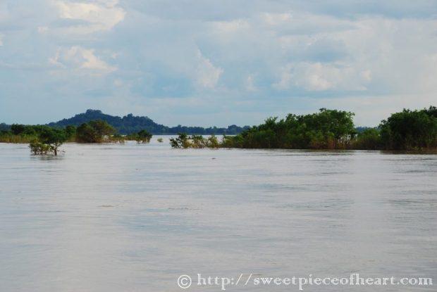 mekong-kratie-dauphins