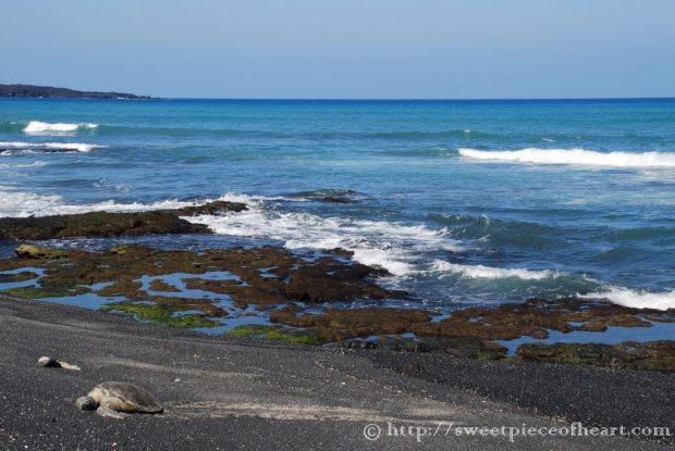 plage-hawaii