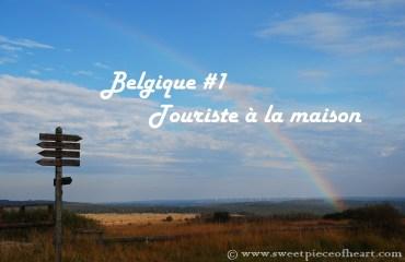 fagnes-belgique