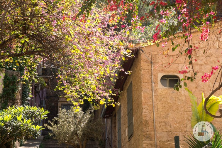 beyrouth-43