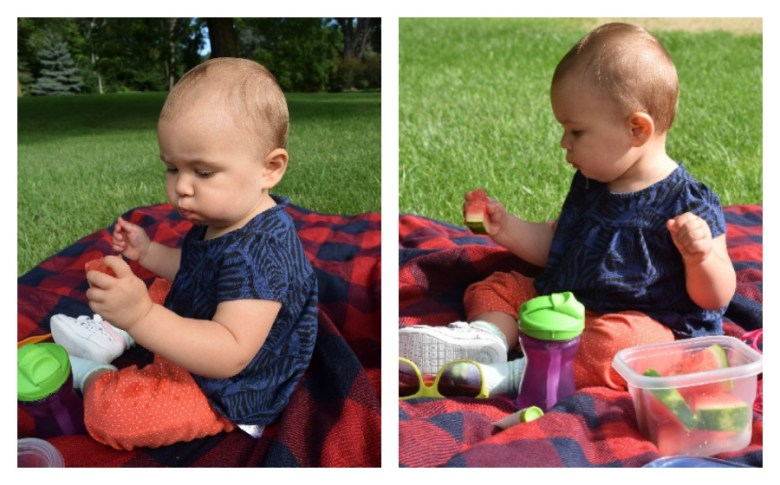 picnic with baby