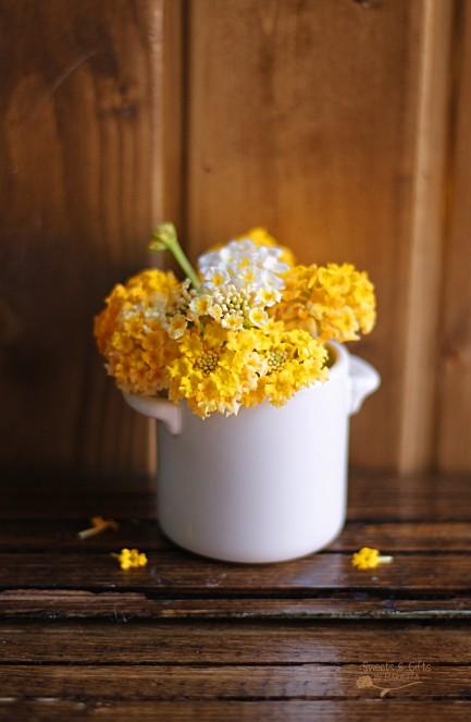 Flor amarilla editada
