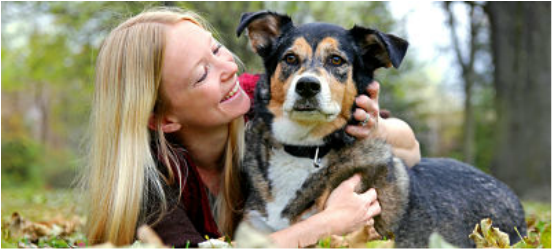 Pet Resolve is a family run business which prides itself on providing some of the best dog training collars on the market. We offer premium products made to last the distance so that you can train your dogs to respond you as their master, in a safe, humane way. The collar can be used to prevent running, barking, jumping, chewing, biting and many other unwanted dog behaviors.