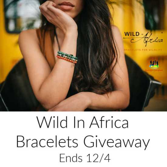 🎄 Enter and you could be 1 of 3 who will #WIN a Wild In Africa Bracelet when this #SMGN Holiday Gift 🎁 Guide #Giveaway ends 12/4. @SMGurusNetwork @las930 @Wild_In_Africa