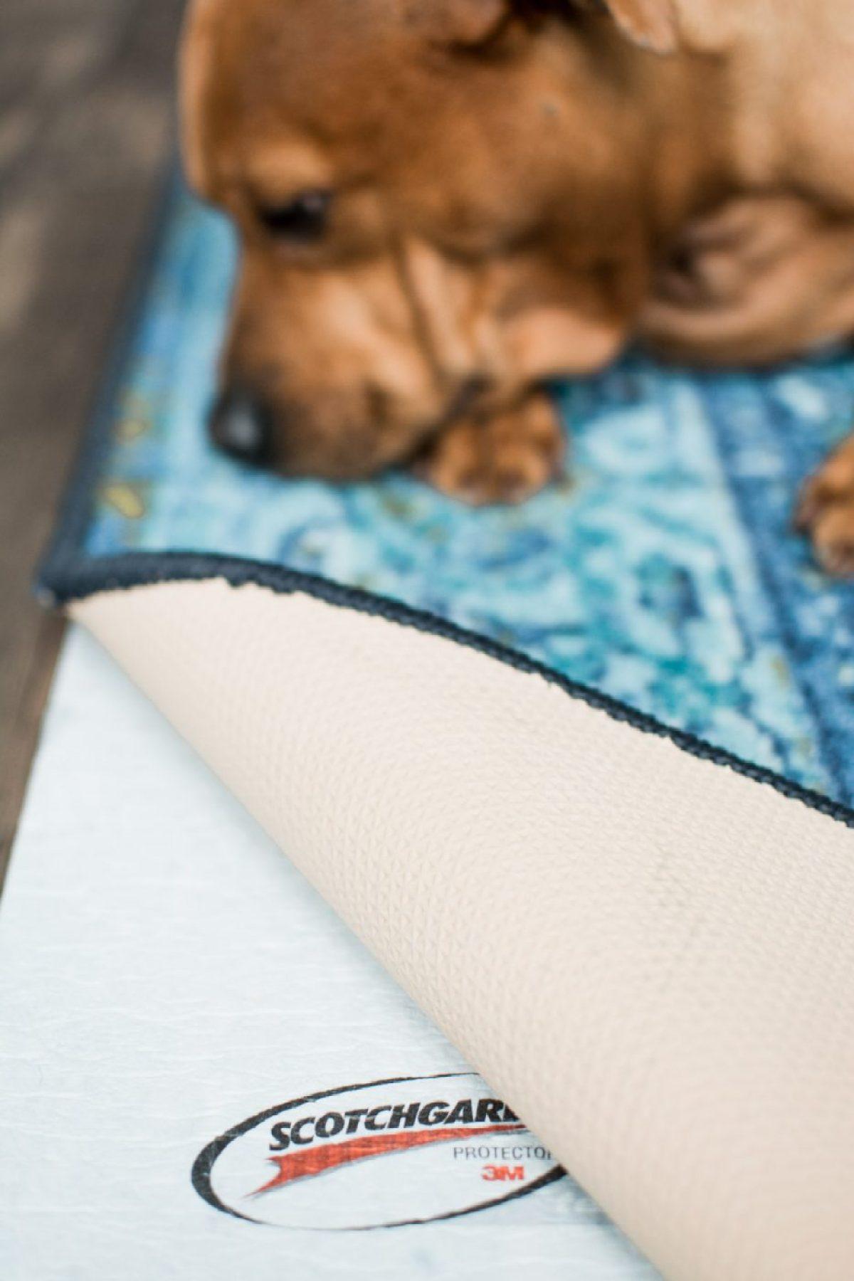 Waterproof RugPadUSA with rug and dog - Sweet Teal