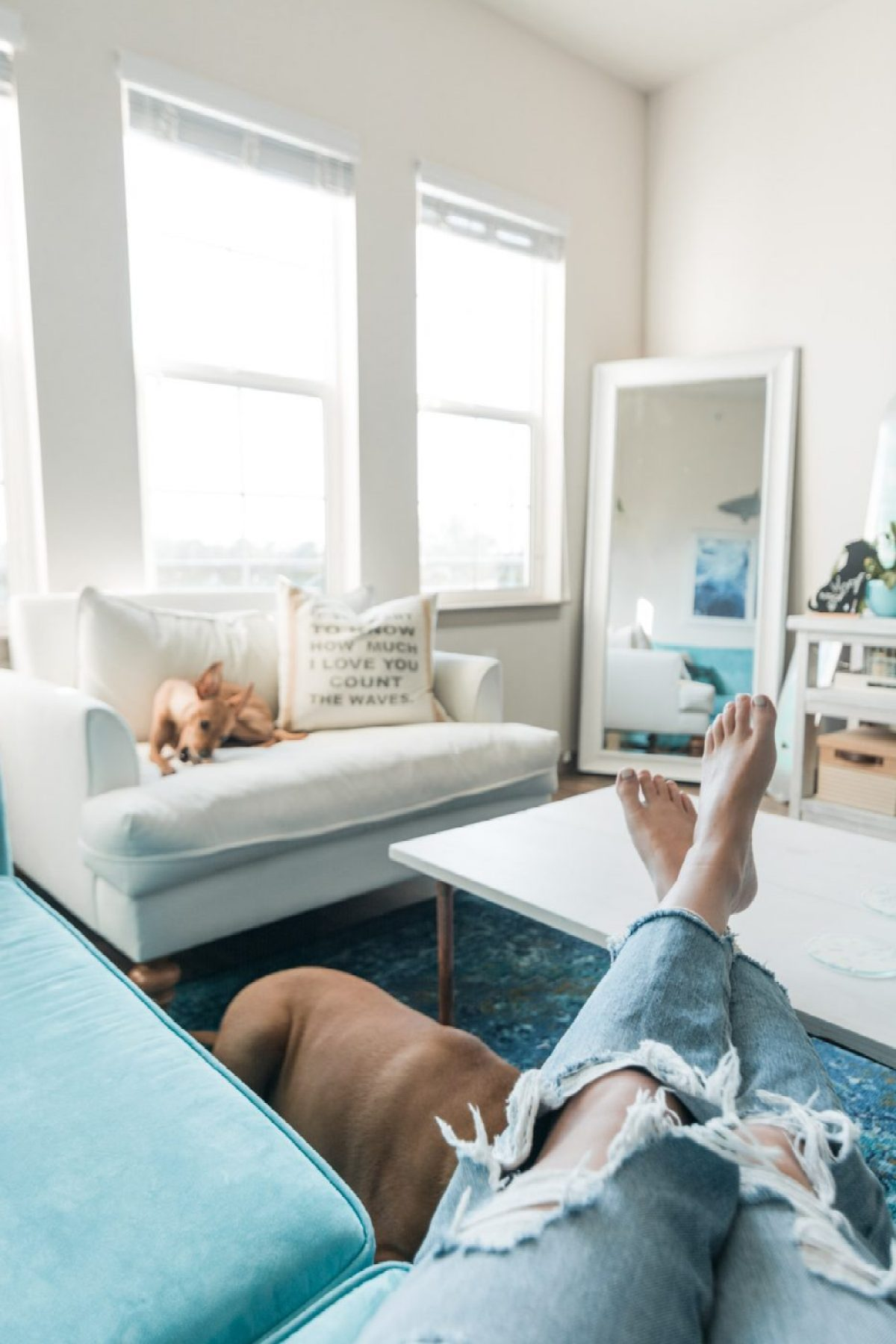 Making the most of an apartment living room by Jenny Bess of Sweet Teal