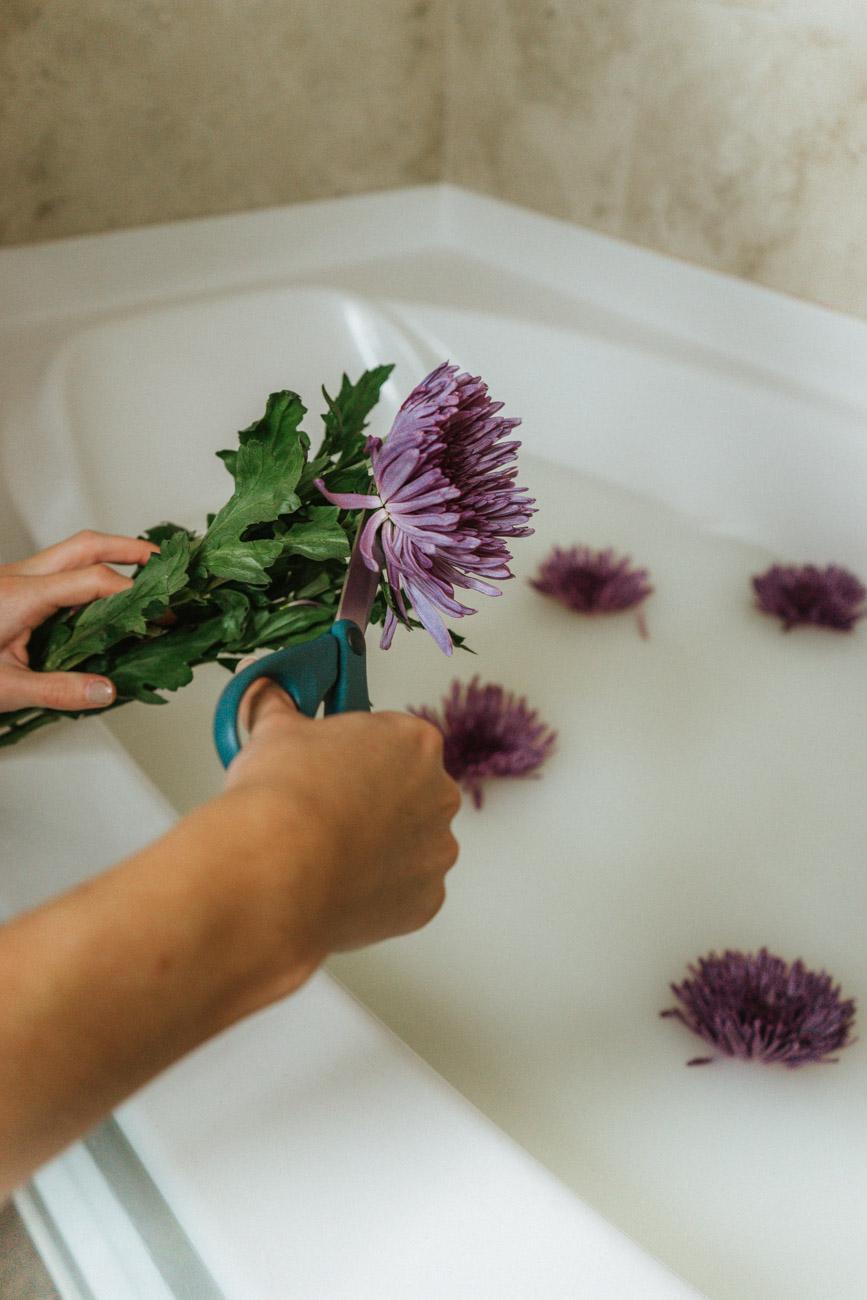 cutting flowers for bath