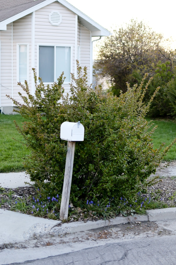 Before Mailbox Makeover - Make Your Home Look Like A Million Bucks