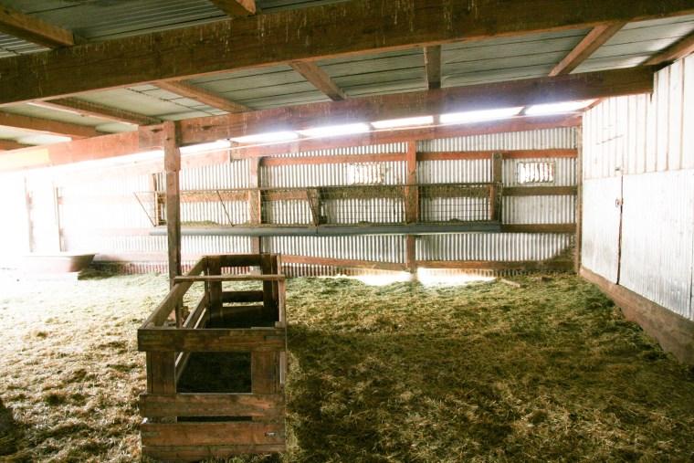 Harley Goat Farm Pescadero, CA | www.sweetteasweetie.com