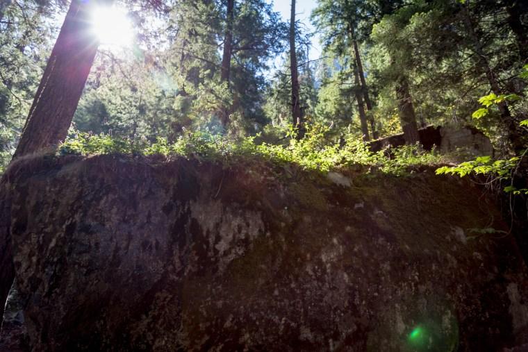 Yosemite's Mist Trail to Vernal Falls   www.sweetteasweetie.com