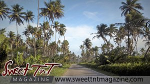 Manzanilla road in sweet T&T for Sweet TnT Magazine, Culturama Publishing Company, for news in Trinidad, in Port of Spain, Trinidad and Tobago, with positive how to photography.