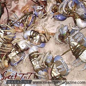 Crabs tied on ground, Kielon Hilaire, Sweet T&T, Sweet TnT, Trinidad and Tobago, Trini, vacation, travel,