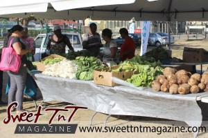 Woman with pink bag, black blouse, grey pants, stands by box of ochroes, leafy vegetables, cabbages, lettuce, woman holding callaloo bush, dasheen bush, box of green plantain, green fig, dasheen, fibre, provision, ground produce at Farmers' Market at Queen's Park Savannah, Port of Spain in parking lot in Sweet T&T, Sweet TnT, Trinidad and Tobago, Trini, vacation, travel