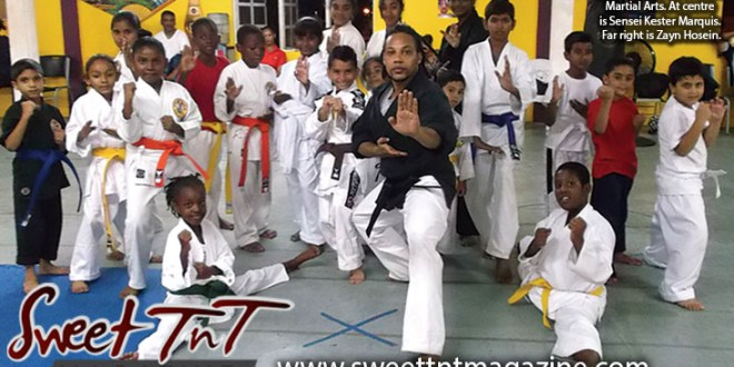 Students of Golden Eagle Martial Arts, Sensei Kester Marquis, Zayn Hosein, Sweet T&T, Sweet TnT, Trinidad and Tobago, Trini, vacation, travel