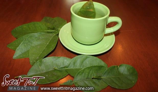 lime-bud-tea