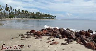 Icacos blue sky coconut trees water rocks on sand by Marika Mohammed for story Icacos end of Trinidad in Sweet T&T, Sweet TnT, Trinidad and Tobago, Trini, vacation, travel