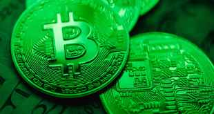 Most popular cryptocurrencies. Green and white round ornament.
