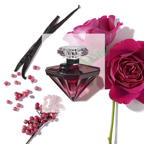 10 Most popular perfumes this Mother's Day