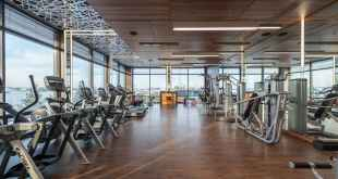 Health and Fitness. Various fitness machines in modern spacious gym