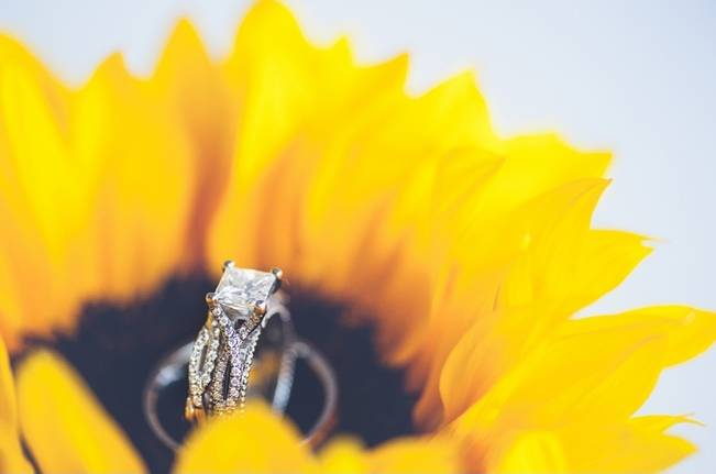 Rustic Pennsylvania Sunflower Wedding at Friedman Farms 1