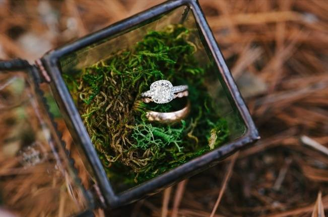 Deer Themed Woodland Wedding {Allie Siarto Photography} 2