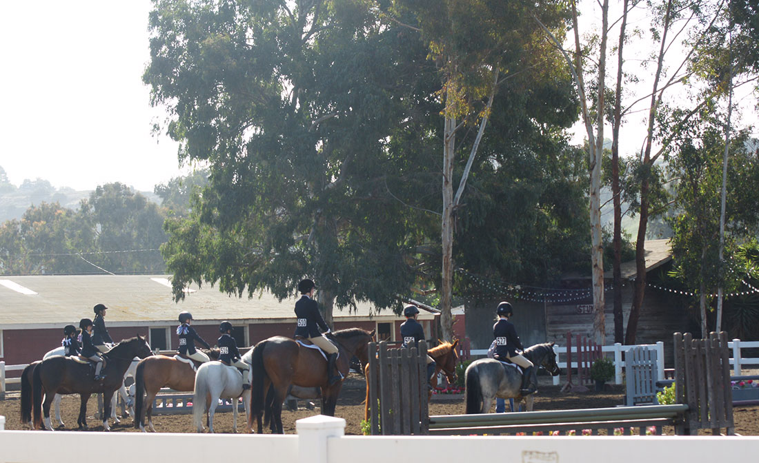 Sweetwater Riding Lessons