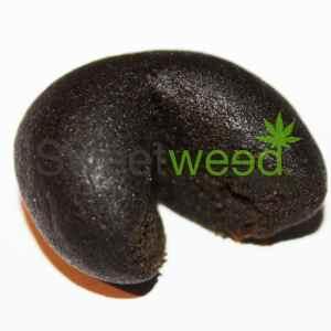 black afghan cbd cannabis france