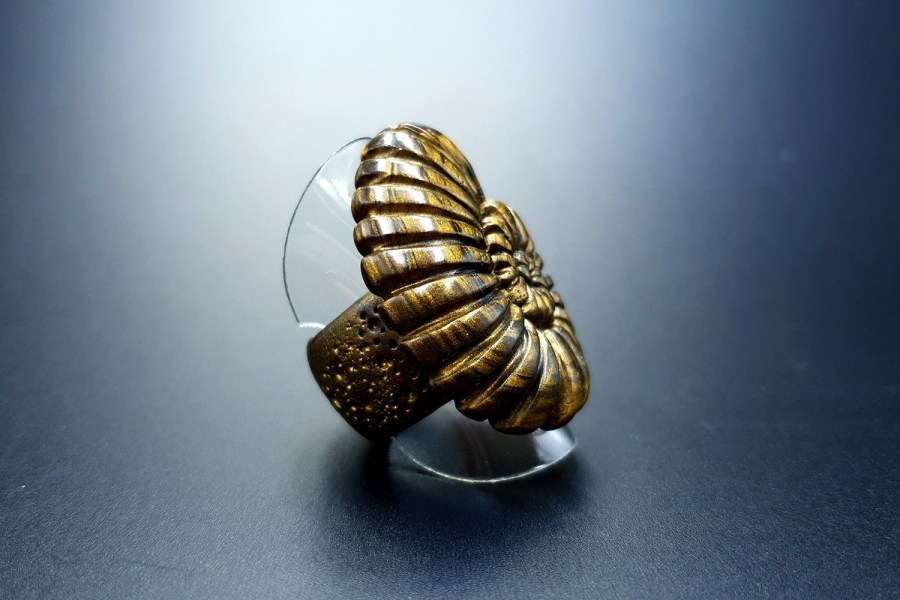 Ammonite Ring 01