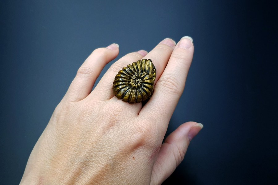 Ammonite Ring 04