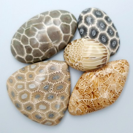 Set of 5 cabochons Faux Petoskey Stone from Polymer Clay