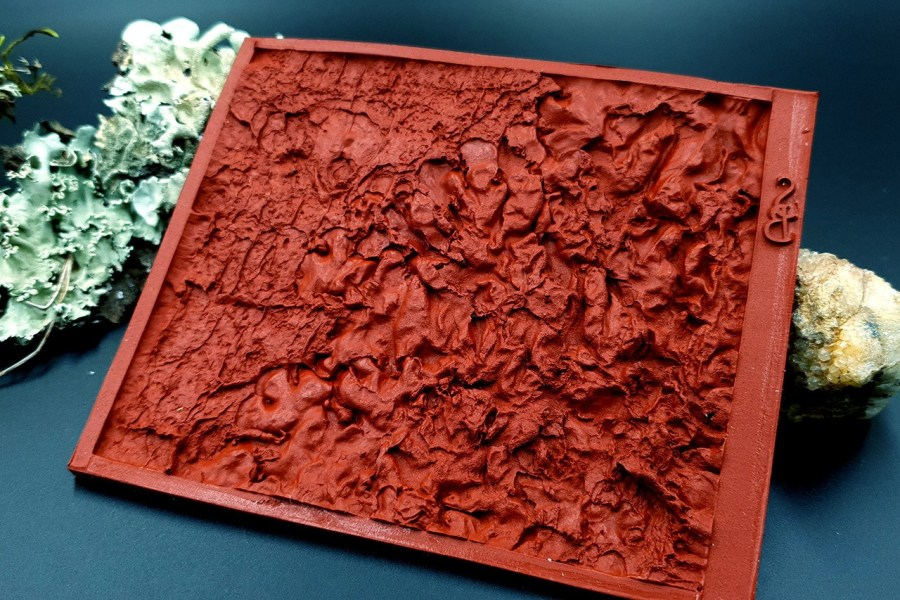 Silicone Texture Forest Lichens - 115x100mm 8
