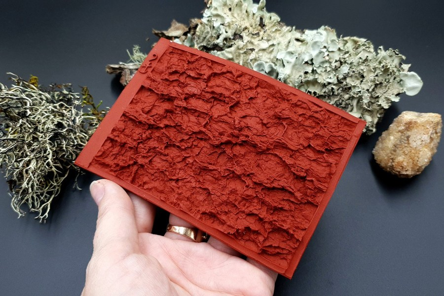 Silicone Texture Tree Bark #2 - 120x80mm 7