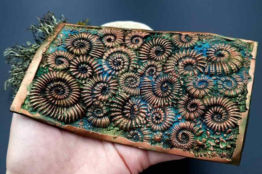 Silicone Texture Ammonites - 140x90mm 4
