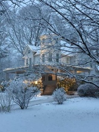 Amazing Winter Garden Landscape 12