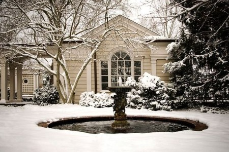 Amazing Winter Garden Landscape 17