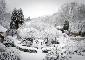Amazing Winter Garden Landscape 22