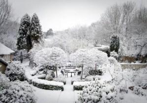 Amazing Winter Garden Landscape 22