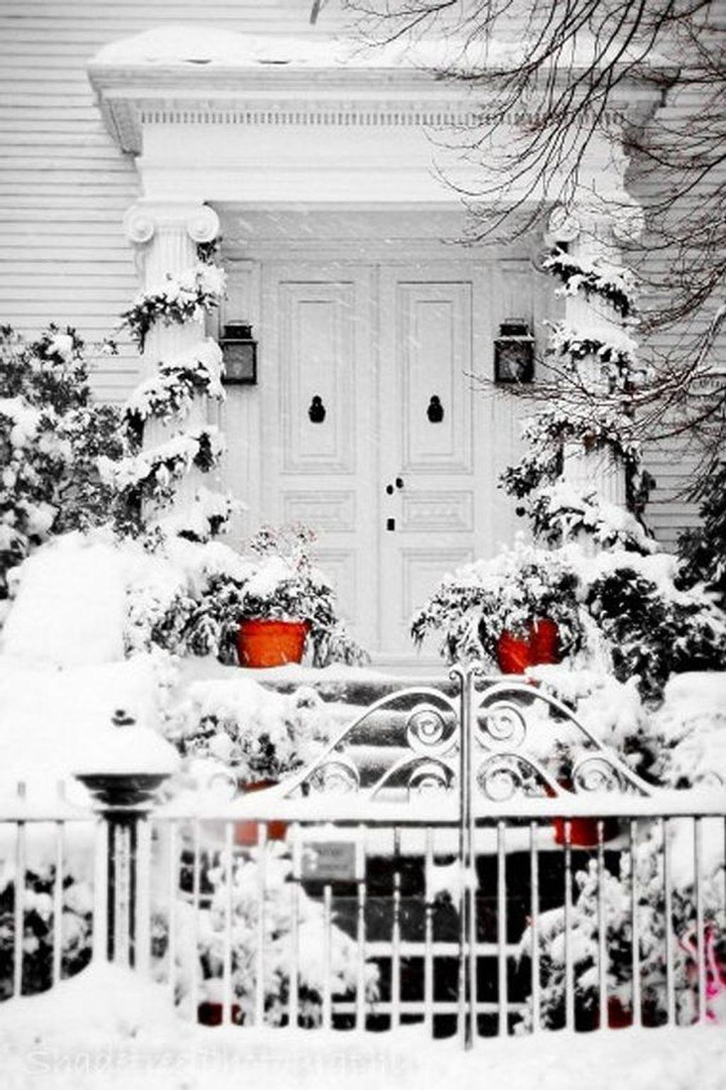 Amazing Winter Garden Landscape 43