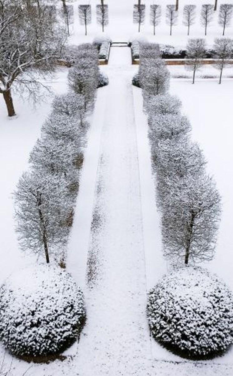 Amazing Winter Garden Landscape 45