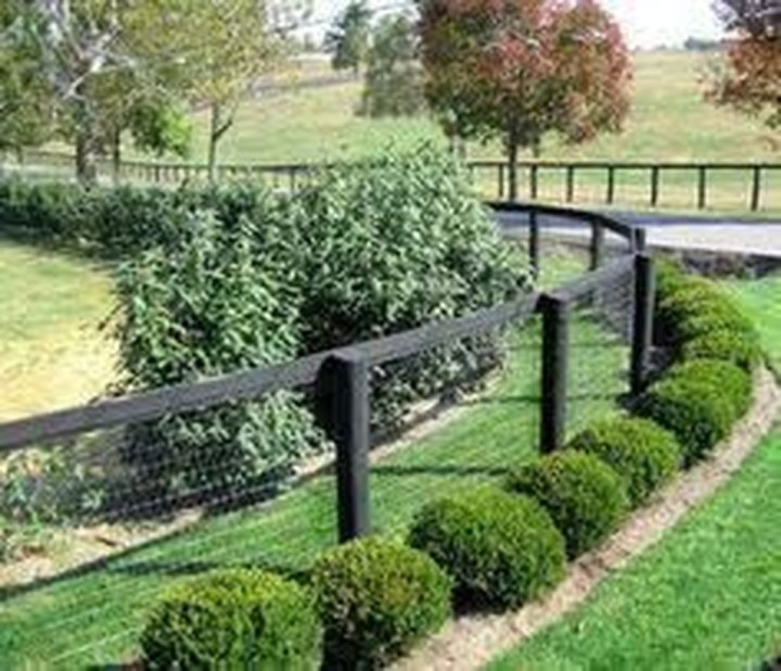 Front Yard Fence Ideas That You Need To Try 16