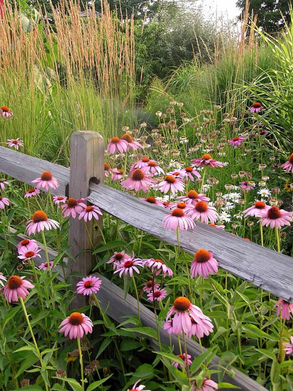 Stunning Backyard Flower Garden Ideas You Should Copy Now 06
