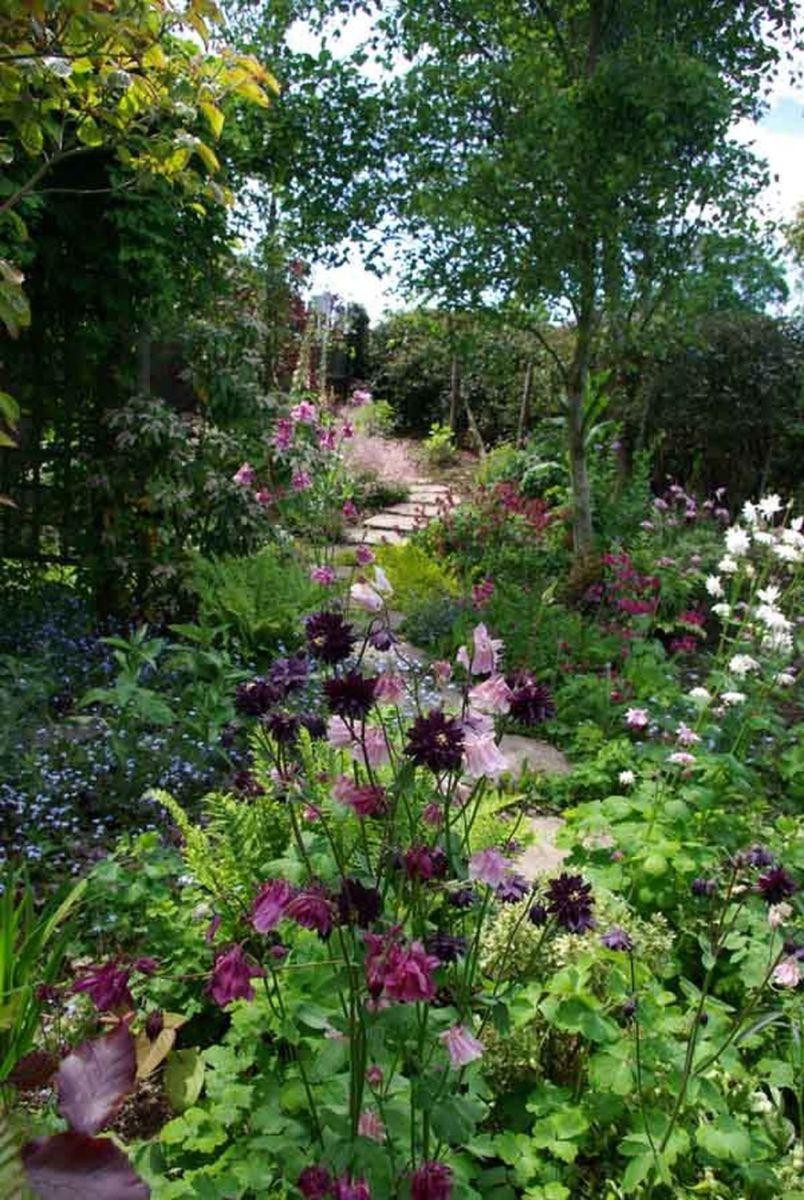 Stunning Backyard Flower Garden Ideas You Should Copy Now 09