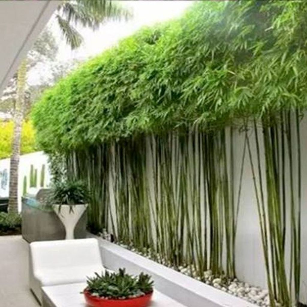 Wonderful Modern Garden Design Ideas 13 1