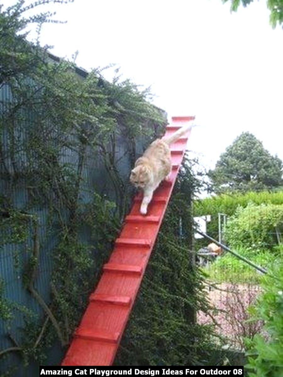 Amazing Cat Playground Design Ideas For Outdoor 08