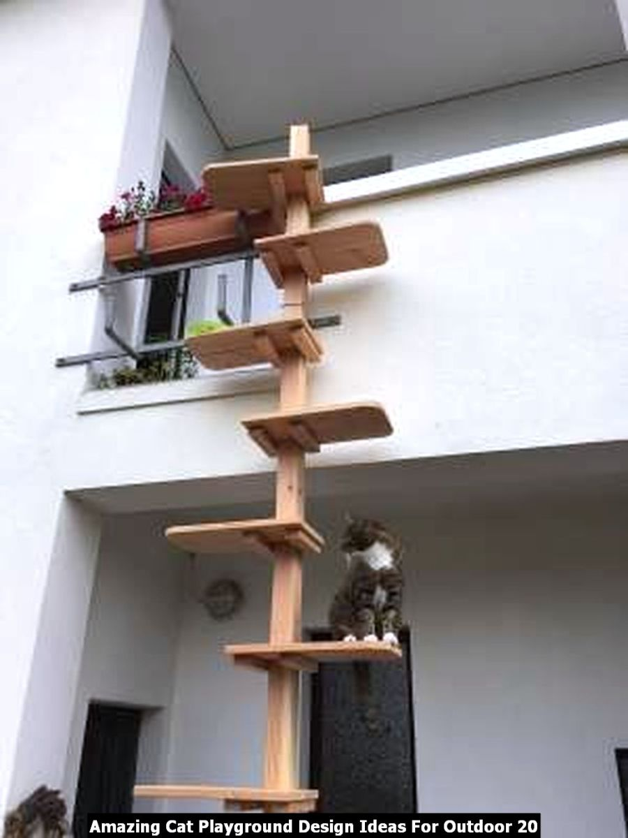 Amazing Cat Playground Design Ideas For Outdoor 20