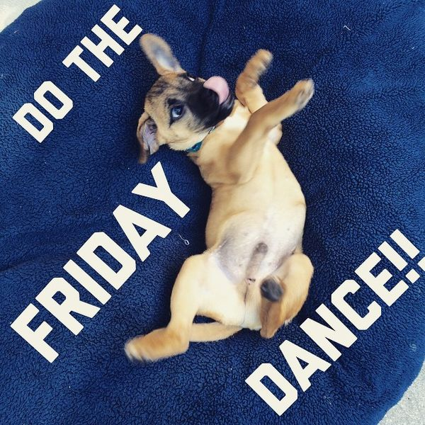 Do the friday dance