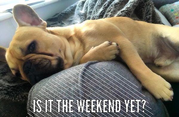 Is it the weekend yet