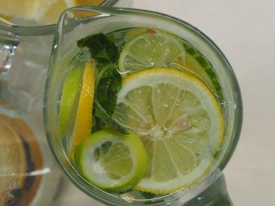 Zitrone, Limette, Gurke, Minze