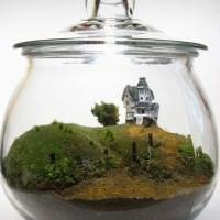 Beetlejuice Terrarium