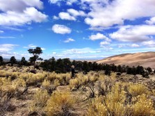 At Great Sand Dunes National Park, CO